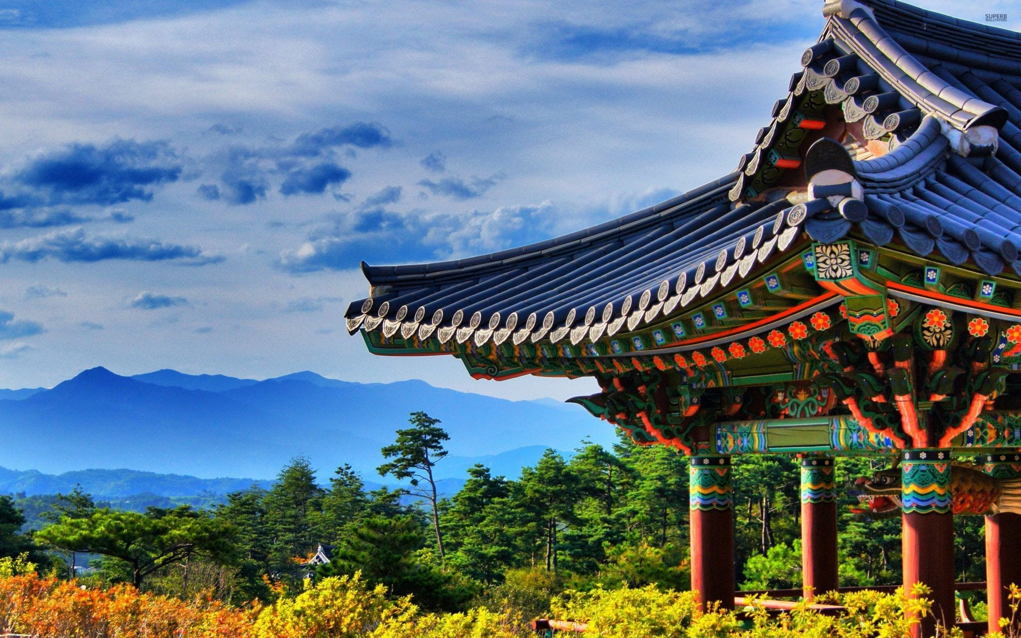 7 Random Facts About Korea (That Might Surprise You)